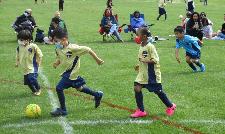 U6 soccer game in Pineville